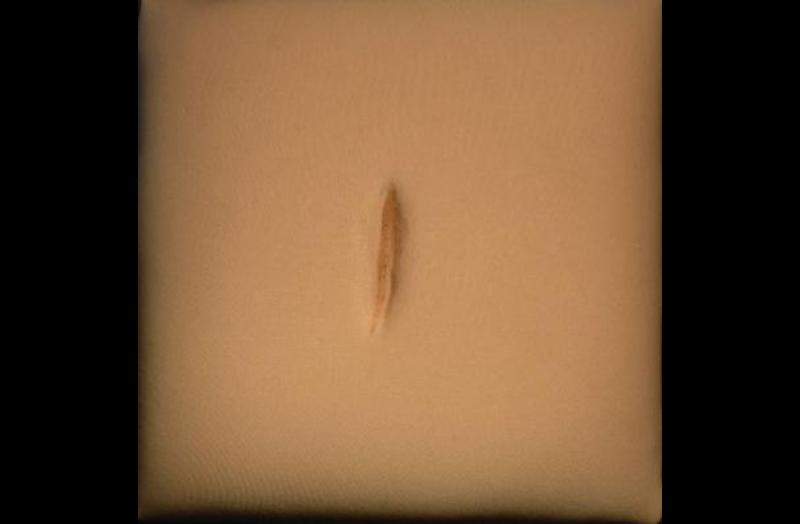 Skin|The Finer Nuance